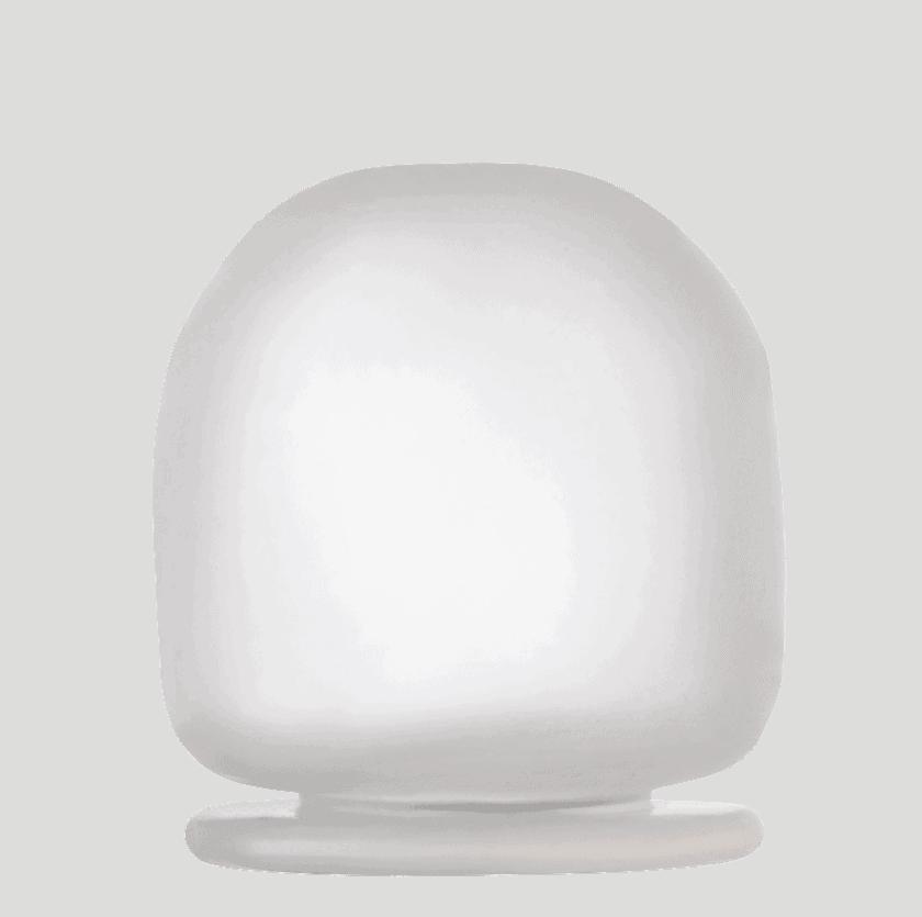Oracle EUS Balloon